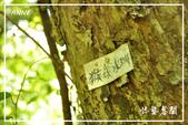 水車寮猴坎水圳:DSC_0322P109.jpg