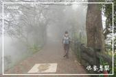 薑麻園古道:DSCN4734P12.jpg
