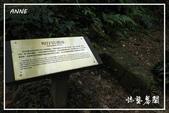 燦光寮貂山古道:DSCN5103P75.jpg