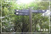 燦光寮貂山古道:DSCN5104P76.jpg