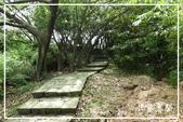 磺溪步道、橫嶺古道:DSCN5699P04.jpg