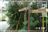 燦光寮貂山古道:DSCN5017P02.jpg