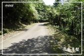 平湖步道:DSCN5434P16.jpg