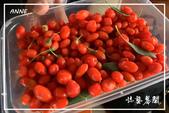 北疆:f0 (13)P29.jpg