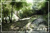 平湖步道:DSCN5428P10.jpg