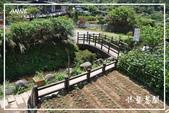 水車寮猴坎水圳:DSC_0261P67.jpg