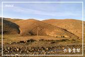 北疆:b0 (6)P137.jpg