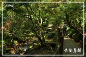 水車寮猴坎水圳:DSC_0197P15.jpg