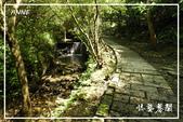 平湖步道:DSCN5429P11.jpg