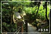 水車寮猴坎水圳:DSC_0203P19.jpg