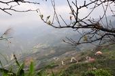 馬拉邦山:00 (8).jpg