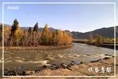 北疆:b0 (30)P105.jpg