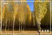 北疆:b0 (20)P89.jpg