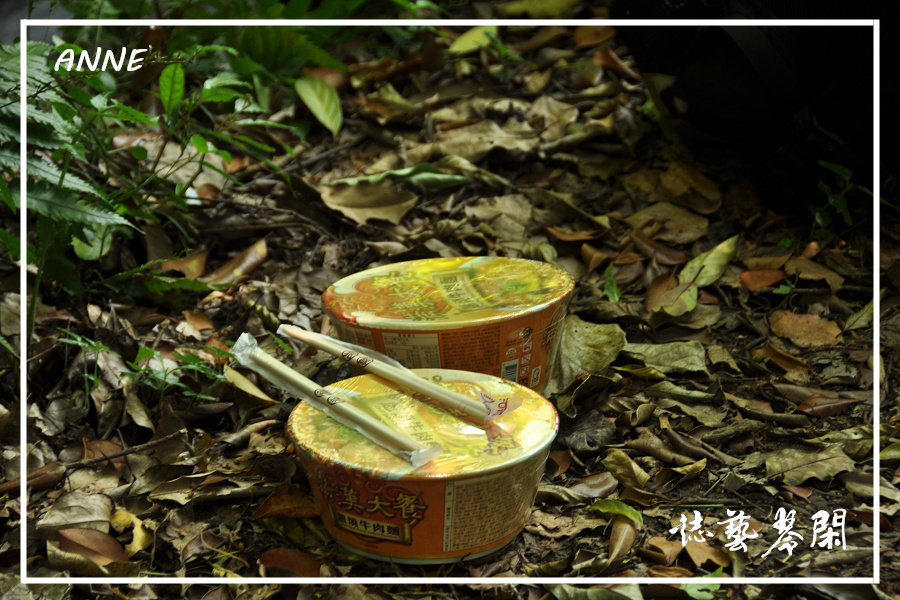 水車寮猴坎水圳:DSC_0314P105.jpg