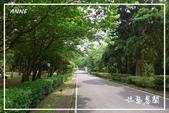 水車寮猴坎水圳:DSC_0378P149.jpg