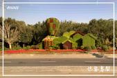 北疆:j (59)P79.jpg