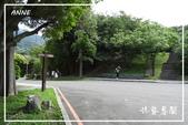 磺溪步道、橫嶺古道:DSCN5697P03.jpg