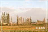 北疆:j (7)P91.jpg
