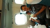 18新幹線上.JPG - 1050721暑假日本行