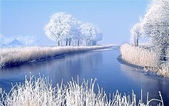 風景:20030520_p751216_220129.jpg