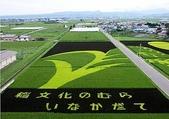 日本:日本的稻田藝術.b.jpg