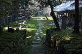 日本:石庭(左)、観音堂(右).jpg