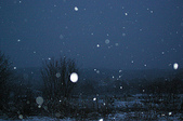 日本:雪.jpg
