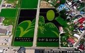 日本:日本的稻田藝術.d.jpg