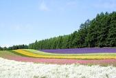 風景:20030508_ufopp2000_205649.jpg
