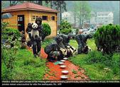 狗狗和熊熊:熊熊3.jpg