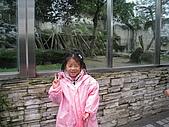 99年春遊 :IMG_7592.JPG