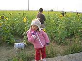 98年嘉義市花海節 :IMG_6923.JPG