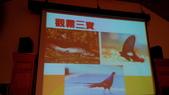 雪霸國家公園:觀霧三寶-山椒魚`寬尾鳳蝶`長黑尾帝雉