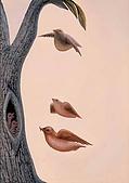 綜合與其它類:鳥飛