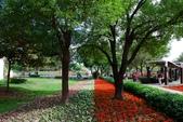 1061126溪州花園:_DSC4510.jpg