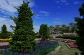 1061126溪州花園:_DSC4501.jpg