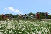 106/11/19后里中社花園:_DSC6872.jpg