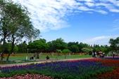 1061126溪州花園:_DSC4522.jpg