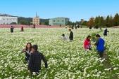 106/11/19后里中社花園:_DSC6829.jpg