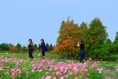 106/11/19后里中社花園:_DSC6852.jpg