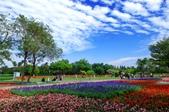1061126溪州花園:_DSC4524.jpg