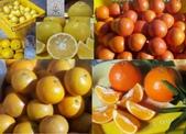 老父親的水果園:綜合4.JPG