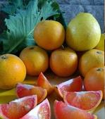 老父親的水果園:紅肉b.jpg