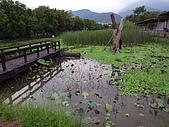 親水休閒農場:生態池