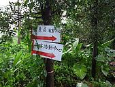 參訪一鴻旗有機休閒農場:R0013114.JPG