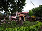 親水休閒農場:遠方的大芒果