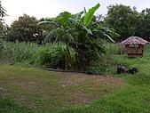 親水休閒農場:生態池後方