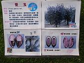 參訪一高雄休閒農場:R0013012.JPG