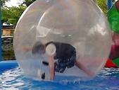 (在球體中用翻滾或行走在水面上前進):(在球體中用翻滾或行走在水面上前進)
