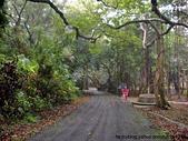 屏東:墾丁森林遊樂區